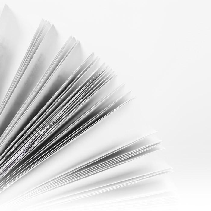 Publications Dr Thierry Loncle
